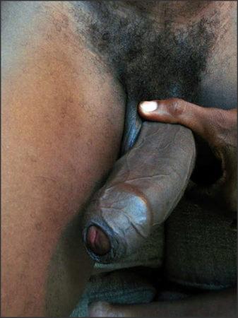 big black cock covered by foreskin